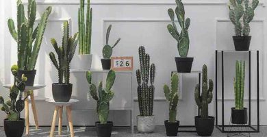 cactus artificial grande